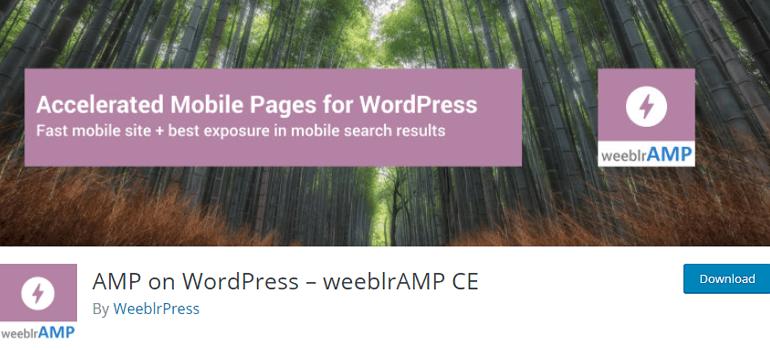 WordPress amp plugins three