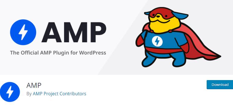 WordPress amp plugins two